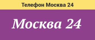 Москва 24 Горячая линия
